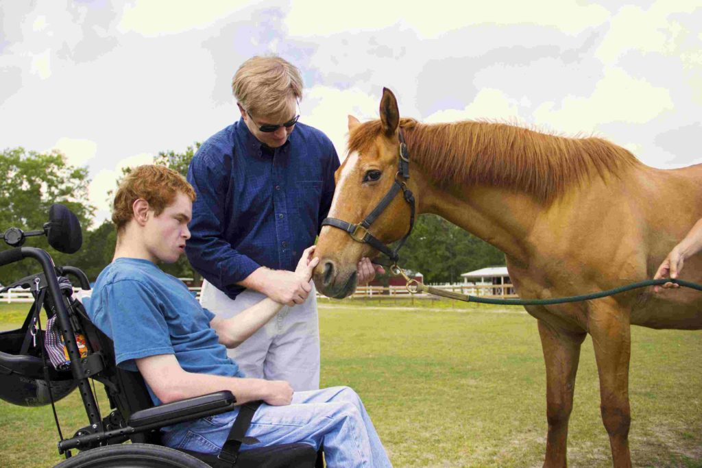 Therapeutic riding at Rein and Shine